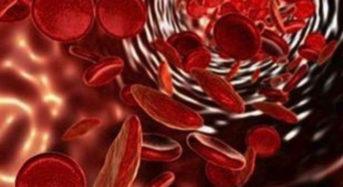 Παντοδύναμα βλαστοκύτταρα μπορούν να αποτελέσουν δώρο ζωής