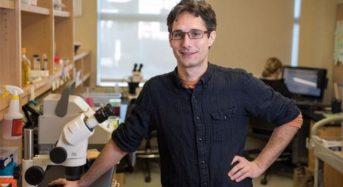 Πιθανό «ελιξήριο της αθανασίας»: Βιολόγοι επέκτειναν τη διάρκεια ζωής σκουληκιών κατά 500%